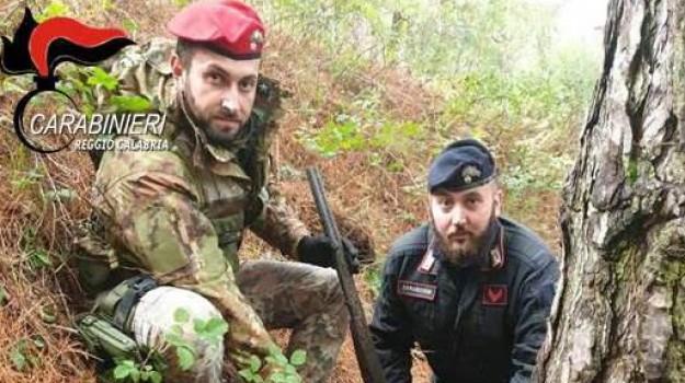 armi, droga, sequestro, Reggio, Calabria, Cronaca