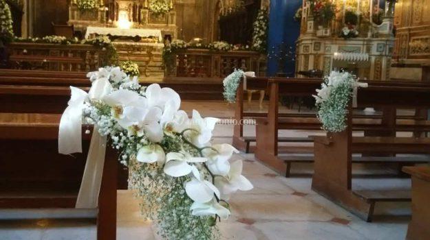 furto in chiesa, ladro Salento, urina in chiesa, Sicilia, Cronaca