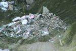 Messina, i rifiuti al posto degli alberi: così Gravitelli è stata trasformata in discarica - Video