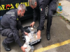 Messina Denaro alla stazione di Trapani? Intercettazione nell'inchiesta su 3 arresti per droga