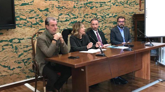 scuola, vibo, Silvia Vono, Catanzaro, Calabria, Politica