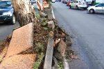 Maltempo a Messina, conta dei danni dopo la bufera: almeno 15 gli alberi divelti e 2 feriti