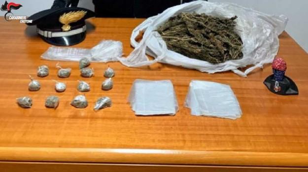 Arresto isola capo rizzuto, marijuana, Catanzaro, Calabria, Cronaca