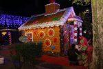 Natale a Cosenza, inaugurati i mercatini di Villa Nuova - Foto