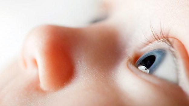 bambini prematuri, malattie degli occhi, retina, retinopatia, Salute e Benessere