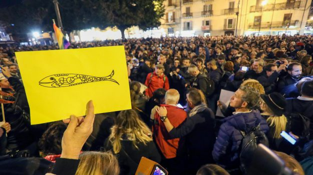 sardine, Matteo Salvini, Cosenza, Calabria, Politica
