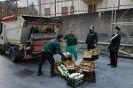 Frutta e verdura mal conservate a Vibo, sequestrate e distrutte 3 tonnellate di merce