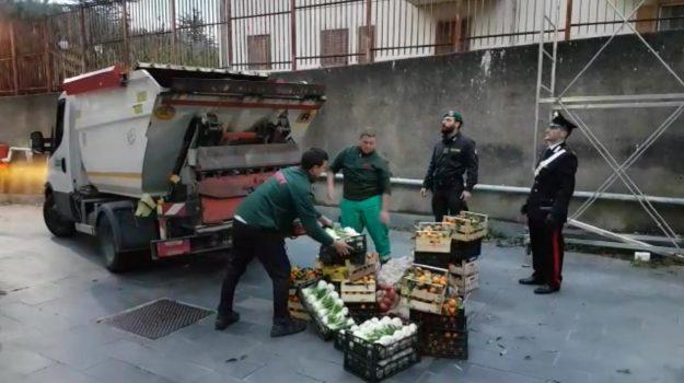 blitz vibo, prodotti in cattivo stato, sequestro merce Vibo, Catanzaro, Calabria, Cronaca