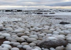 Su una spiaggia in Finlandia sono comparse migliaia di uova di ghiaccio Da dove sono arrivate queste «mega-biglie»? Lo scenario surreale a Hailuoto, nel Golfo di Botnia - CorriereTV