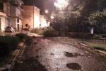 Tromba d'aria nella notte devasta Cutro: tetti divelti, danni ad aziende e alberi abbattuti - Video
