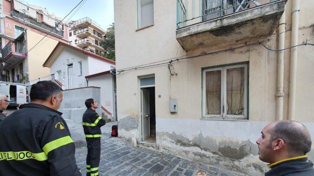 cani, polizia municipale, Messina, Sicilia, Cronaca