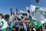 Prezzo dell'olio troppo basso, protestano i produttori a Lamezia