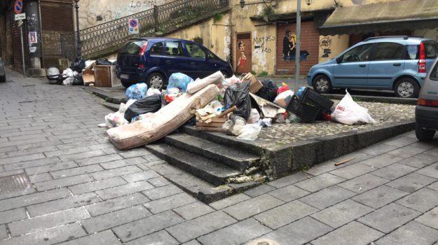 disagi, immondizia, rifiuti, Cosenza, Calabria, Cronaca