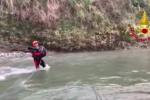 Catanzaro, cane da caccia precipita in un dirupo per 60 metri: le immagini del salvataggio