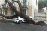 Maltempo a Messina: strade allagate, alberi caduti e devastato il Giardino delle luci - Foto