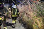 Albero cade sulla strada e trancia cavi luce a Catanzaro, vigili del fuoco lo rimuovono
