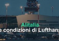 Alitalia, ecco le condizioni di Lufthansa Entro giugno 2020 la proposta della compagnia tedesca per il salvataggio - Ansa