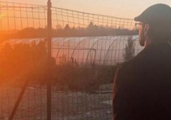 Barba e capelli lunghi: Fabrizio Corona torna sui social con un nuovo look Fabrizio Corona, uscito dal carcere a inizio dicembre, ha pubblicato un breve filmato su Instagram - CorriereTV