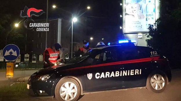 cocaina, corigliano, Cosenza, Calabria, Cronaca