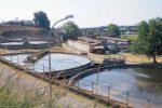 Depuratore di Catanzaro, impennata dei costi: annullata la gara per la gestione
