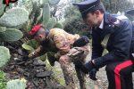 A Samo i carabinieri trovano un fucile e alcune cartucce tra le rocce