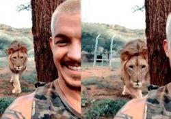 Alle prese con un selfie mentre il leone avanza alle spalle del ragazzo, ma ecco cosa succede Lo svizzero Dean Schneider ha lasciato la sua vita a Zurigo per dedicarsi alla tutela degli animali selvatici in Sudafrica - CorriereTV