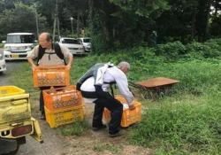 In Giappone gli anziani usano l'esoscheletro per continuare a lavorare (e non rompersi la schiena) Il dispositivo aggiunge una forza supplementare di 30 kg e pesa solo 5,5 kg - CorriereTV