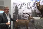 In viaggio dentro Kosmos, il museo di Pavia che racconta la natura