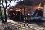 Borgia, a fuoco una stalla: i vigili del fuoco salvano gli animali - Video