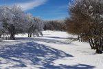 La neve imbianca i Nebrodi: le spettacolari foto da Alcara Li Fusi e Cesarò