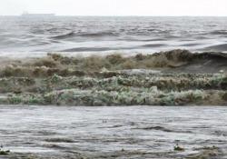 Sudafrica: le onde del mare sono bottiglie di plastica Sulle spiagge della città di Durban si è riversata una vera e propria ondata di detriti e plastica - CorriereTV