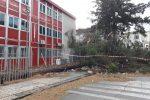 Maltempo in tutta la Sicilia, raffiche di vento fortissime a Palermo: alberi divelti e strade chiuse