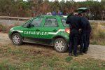 Taglio abusivo di alberi nel greto del fiume Nicà, denunciato a Crucoli un 31enne di Cariati