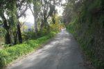 Sulla strada per Sicaminò le strade non sono sicure