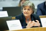 Ferreira (Ue), Regioni solide essenziali per la transizione