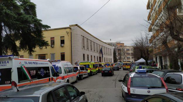 asp di cosenza, Carlo Guccione, Cosenza, Calabria, Politica