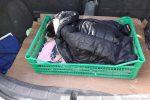 Pizzo, cagnolino investito e lasciato sulla strada: soccorso dagli operatori ecologici