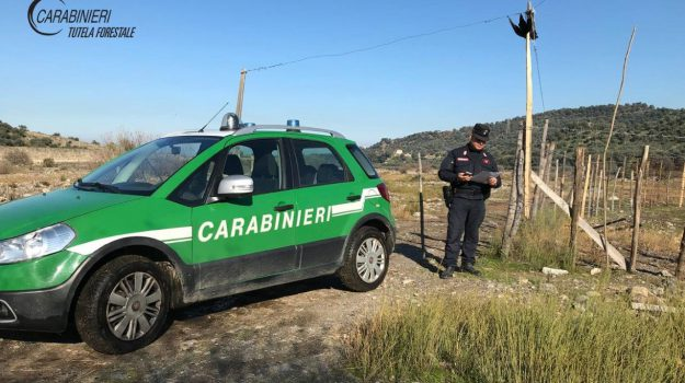 abusivismo, corigliano-rossano, Cosenza, Calabria, Cronaca