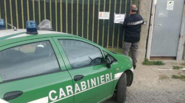 automezzi, terreno agricolo, Reggio, Calabria, Cronaca