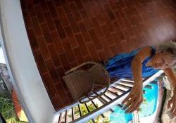 Il momento in cui un'anziana signora salva il base jumper atterrato sul suo balcone Il base jumper ha sbagliato la discesa e si è schiantato contro un edificio ad Acapulco, in Messico - CorriereTV