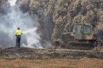 Incendi in Australia, sotto controllo il rogo di Sydney e ora si spera nella pioggia