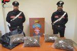 Trasporta due chilogrammi di marijuana in auto, carabinieri arrestano 35enne di Bovalino