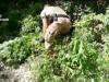 La droga calabrese sulle piste da sci delle Dolomiti, blitz con 15 arresti nella Piana di Gioia Tauro