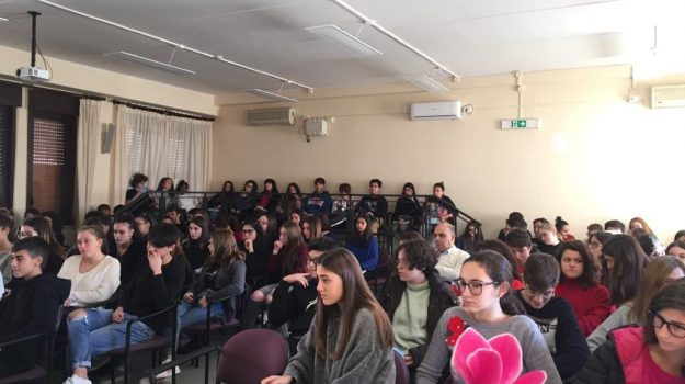 scuola, Messina, Sicilia, Cronaca