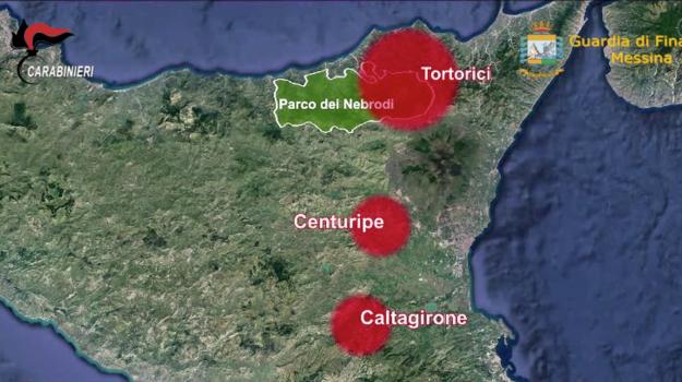 mafia, nebrodi, Messina, Sicilia, Cronaca