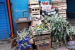 Messina, nei mercati Vascone e Sant'Orsola morosi e rifiuti abbandonati - Foto