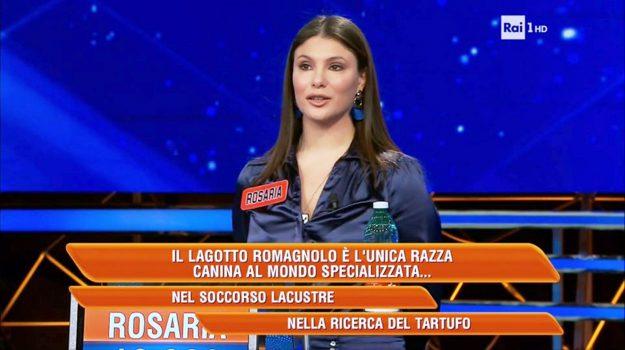 L'Eredità, tv, Rosaria Riccelli, Catanzaro, Calabria, Società