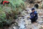 Scarichi abusivi nel torrente, denunciato il proprietario di un frantoio di San Demetrio Corone