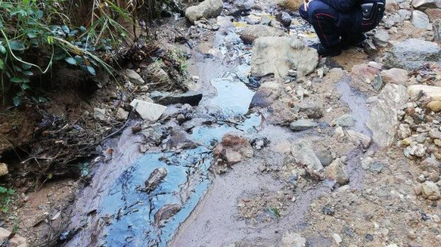 frantoio, inquinamento, san demetrio corone, Cosenza, Calabria, Cronaca