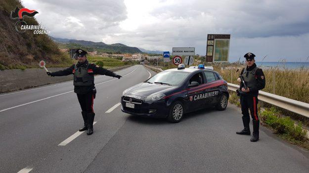 arresto Belvedere Marittimo, droga, Cosenza, Calabria, Cronaca